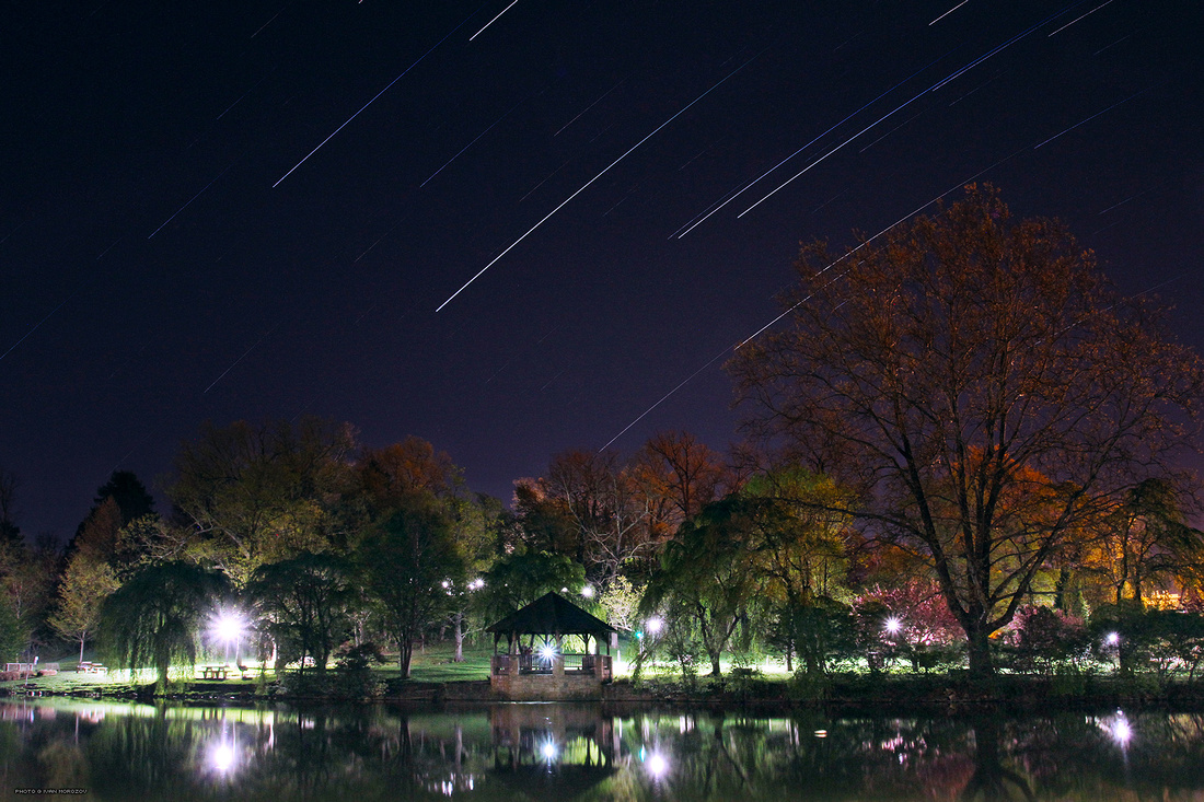 Star Trails at the Duck Pond. Virginia Tech.
